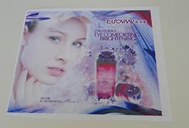 Žymaus audinio banner, išspausdintas 1,6 m (5 pėdų) ekologinio tirpiklio spausdintuvo WER-ES160 4