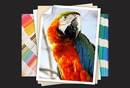 Nuotraukų knyga, išspausdinta 1,8 m (6 pėdų) ekologinio tirpiklio WER-ES1802 spausdintuvo